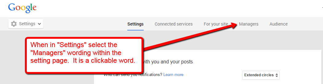 Google Plus Setting for manager